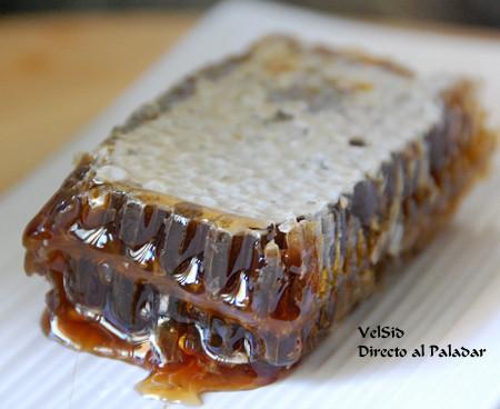 Panales de miel de Liébana ecológicos para disfrutar en nuestra mesa