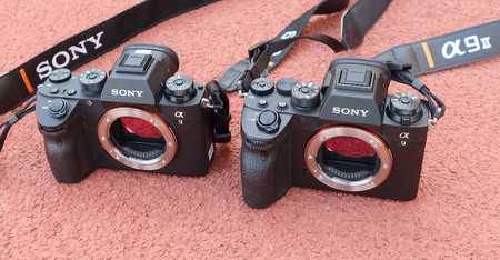 Sony A9 Ii Toma Contacto 10