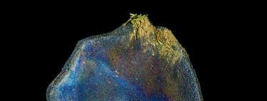 La historia del meteorito distinto a los demás porque tiene origen orgánico
