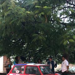 Foto 2 de 11 de la galería mini-clubman-en-la-carrera-panamericana en Motorpasión México