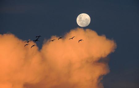 Los consejos de la NASA para fotografiar la superluna de esta noche