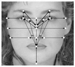 20080904_Facial_Recognition.jpg