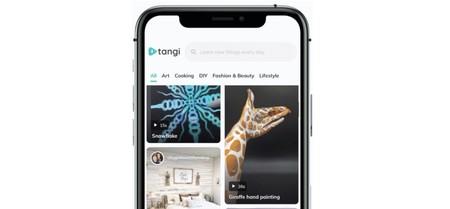 Google lanza Tangi: su particular 'TikTok' para que los usuarios aprendan mientras se entretienen