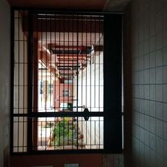 Foto 17 de 17 de la galería fotografias-tomadas-con-el-lg-v40-thinq en Xataka
