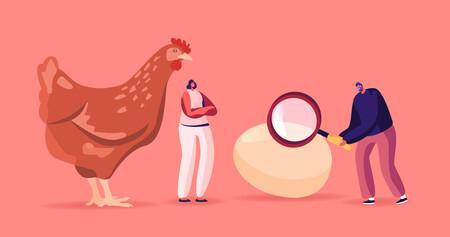 Vuelta a la tortilla: el consumo de un huevo o más al día podría mejorar la salud arterial en lugar de empeorarla, según un nuevo metaanálisis