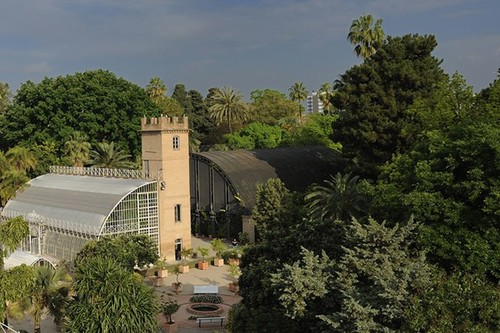 Vive la primavera en el Jardín Botánico de la Universidad de Valencia