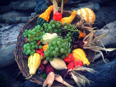 Abundance Agriculture Autumn Decoration 265562