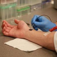 Un pequeño chip para curarlos a todos: un hito en medicina regenerativa