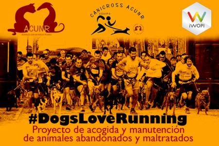 Dona tus kilómetros a una buena causa: #DogsLoveRunning
