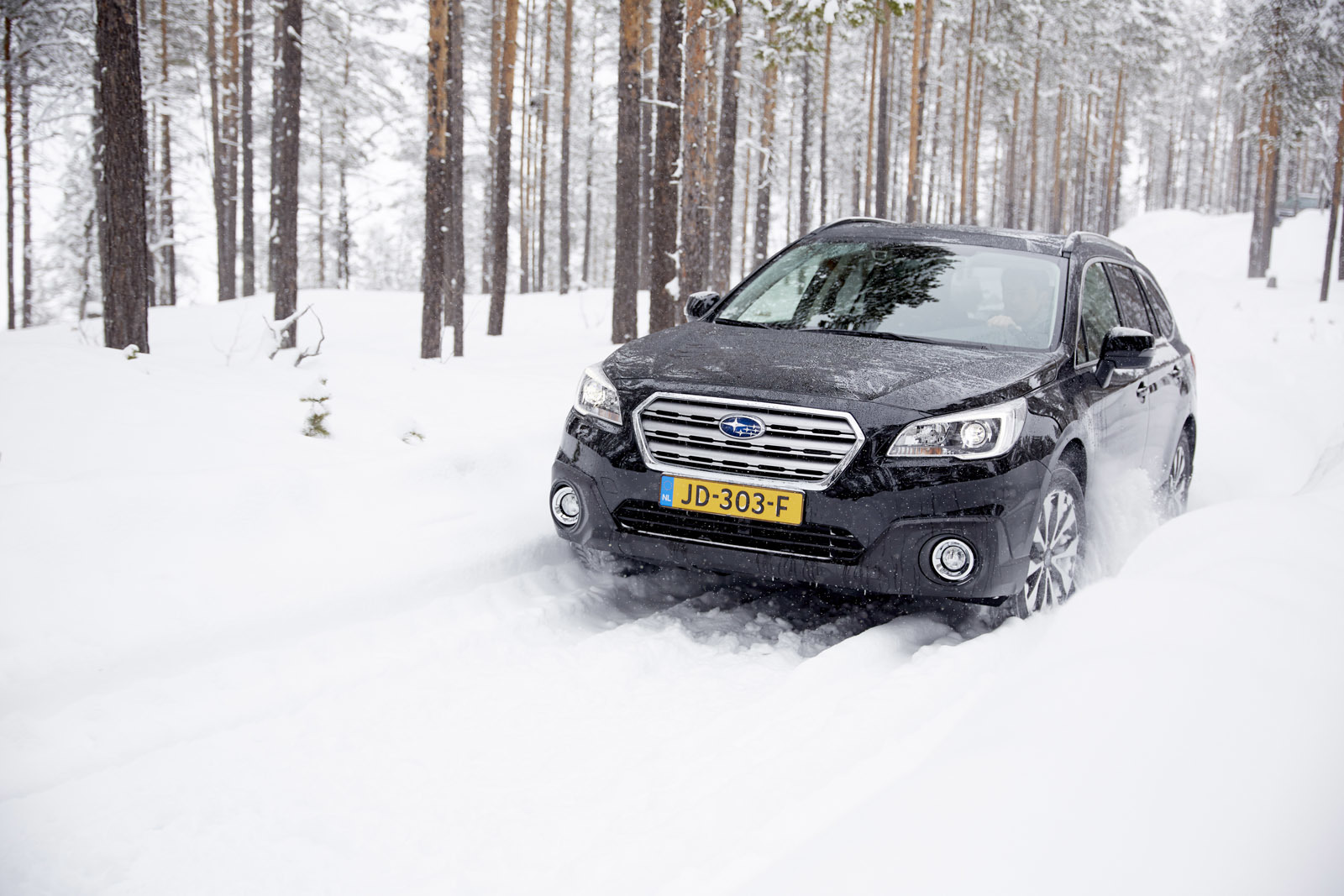 Foto de Subaru Snow Drive 2016 (52/137)