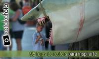 95 fotos de Reuters para inspirarte