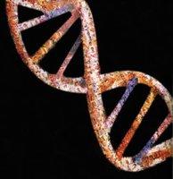 El futuro de las enfermedades genéticas y del comportamiento (I)