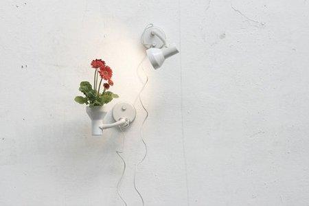 Recicladecoración: convierte tus lámparas en macetas