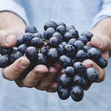 Todo sobre el resveratrol: sus beneficios y cómo sumarlo a tu dieta de forma saludable