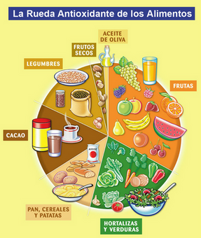 Rueda antioxidante