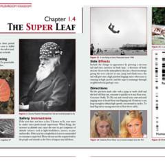 Foto 6 de 7 de la galería the-science-of-the-mushroom-kingdom en Vida Extra