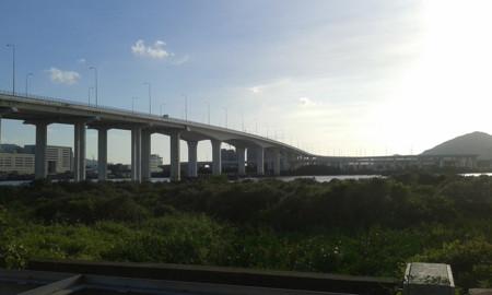 Puente Lotus