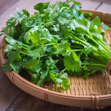 Cilantro, la hierba aromática imprescindible en la cocina latinoamericana y oriental: qué es, cómo usarla y 12 recetas para disfrutarlo