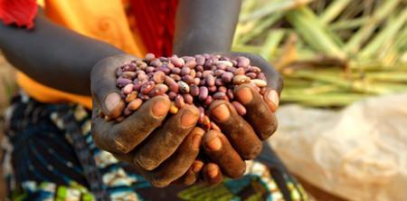 Celebra el día mundial del comercio justo