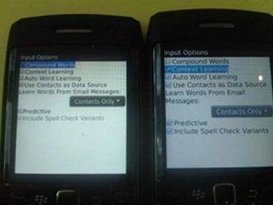 blackberry-pearl-9105-options.jpg