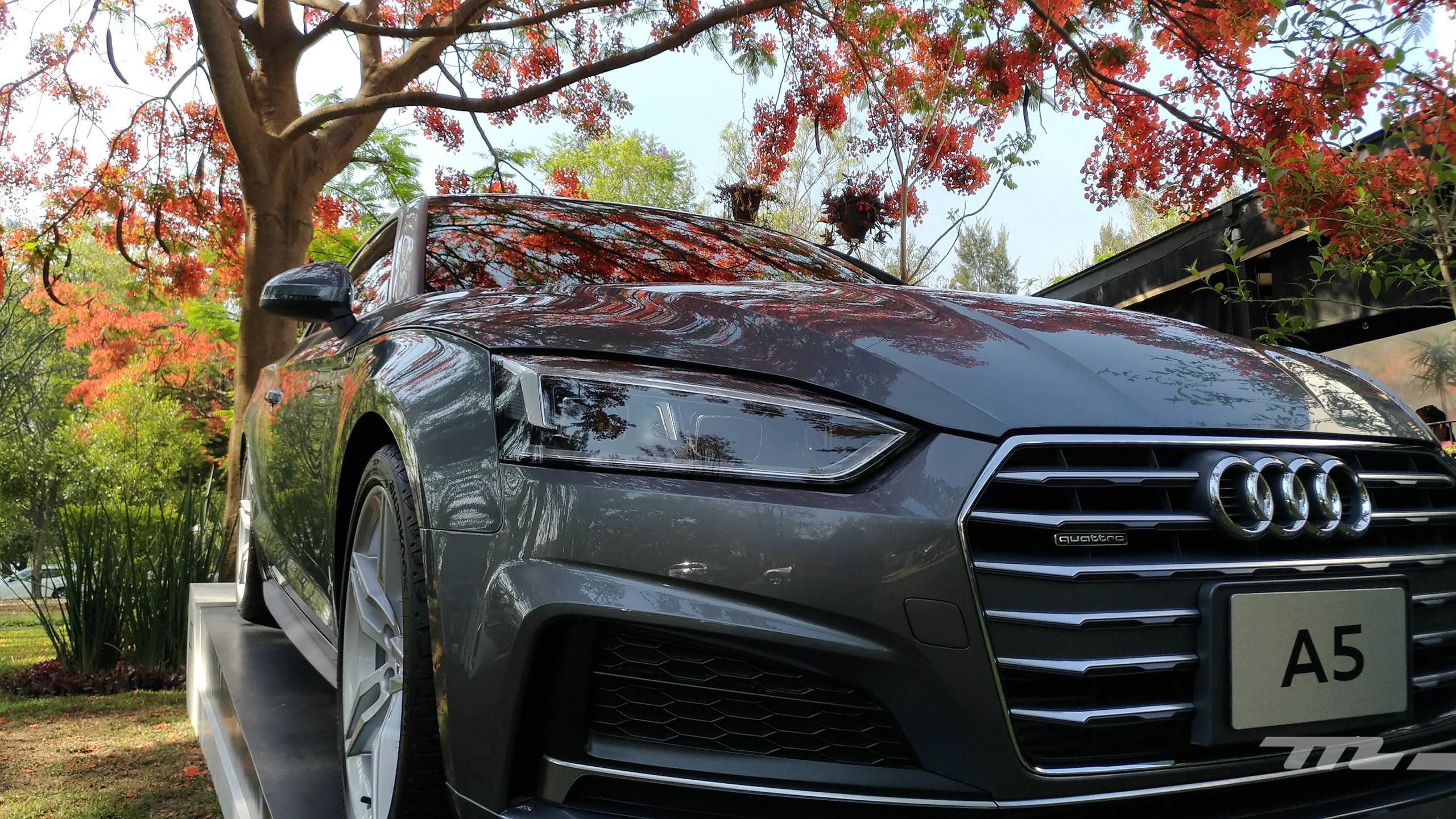 Foto de Audi A5 (5/8)
