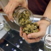 Los efectos de la legalización de las drogas