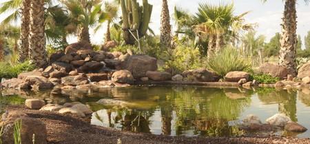 Desert City 6