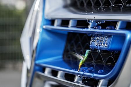 Una nueva solución para un coche de hidrógeno más ecológico: oro, platino, cromo... y agua del mar