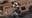 'The Last of Us': ahora sí, aquí está el primer tráiler del multijugador