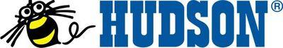 Nacidas antes de los 80 (VI): Hudson Soft
