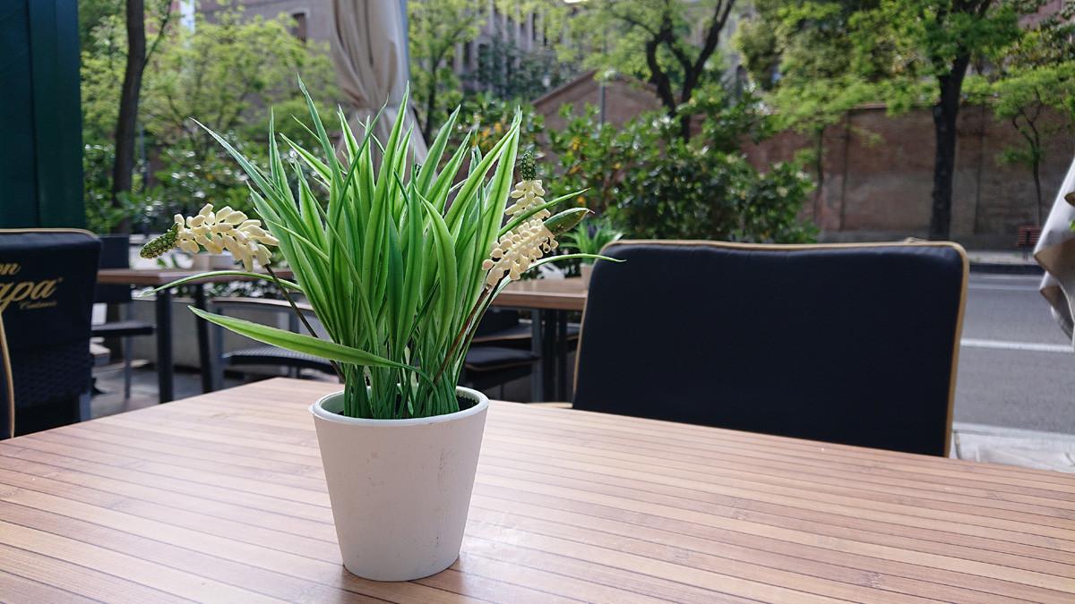 Foto de Sony Xperia XZ2, imágenes de muestra (11/11)