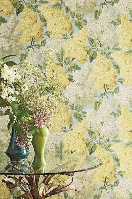 C S Botanical Botanica Lilac Syringa Vulgaris 115 1003 Crop