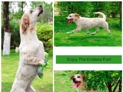 Botas para perros antideslizantes en varias tallas, rebajadas en Amazon por sólo 7,64 euros