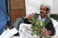 El khat, la droga de los señores de la guerra somalís, prohibida en  el Reino Unido