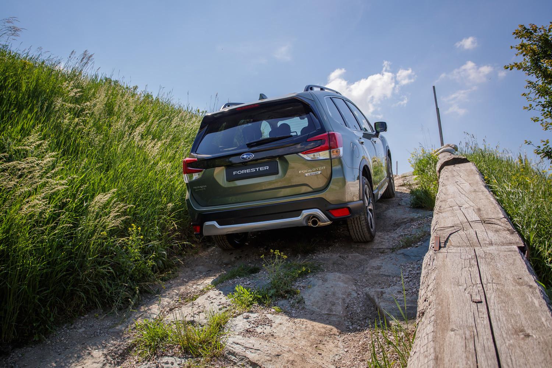 Foto de Subaru Forester y XV Eco Hybrid (4/18)
