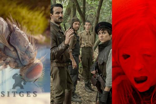 Sitges 2020: 13 películas imprescindibles de la próxima edición del Festival de Cine Fantástico de Cataluña