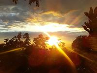 Permite que el sol toque tu piel si quieres preservar tu salud y tu memoria