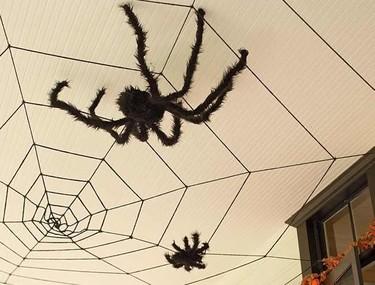 En Halloween coloca arañas en el techo