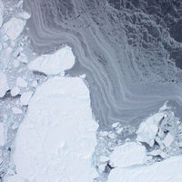 El océano Ártico se está calentando tanto que ha comenzado a fundirse con el Atlántico