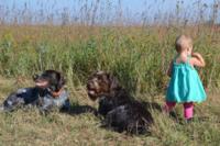 Niños que tienen miedo de los animales