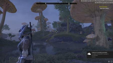 La fauna y la flora de Morrowind