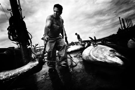 El fotógrafo Antonio González nos muestra la caza del atún mediante la almadraba desde una nueva óptica