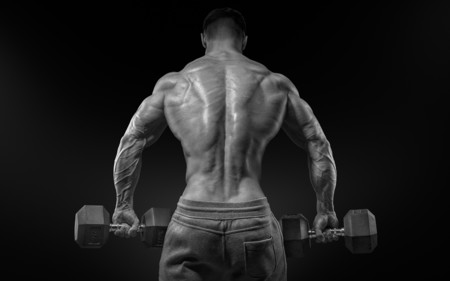 Consejos imprescindibles para ganar músculo