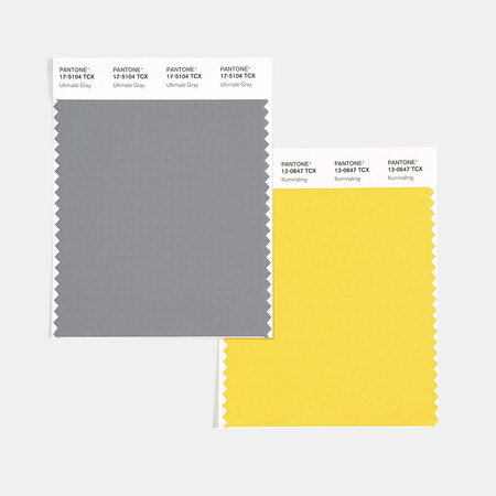 Swcd Tcx Color Of The Year 2021 Ultimate Gray Illuminating 1