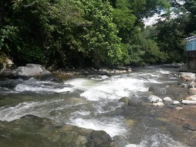 El gobierno declara más de 1.400 hectáreas del Valle del Cauca como área protegida