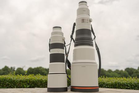 Sony FE 600mm F4 GM OSS y FE 200-600mm F5.6-6.3 G OSS: información y toma de contacto con los nuevos teles para deporte y fauna
