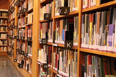 Biblioteca Offline Papel