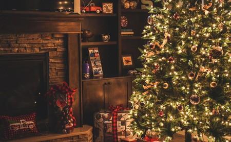 Árboles de Navidad ¿cuál es mejor comprar? Consejos y recomendaciones