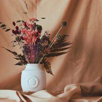 Flores frescas de huertos ecológicos y materiales reciclables, la apuesta floral de Semilla Salvaje