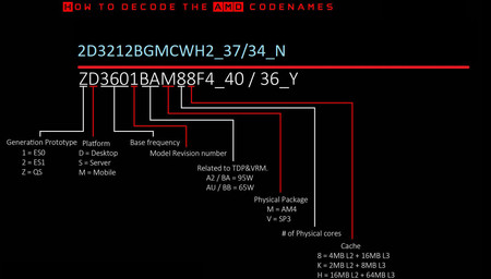 AMD Decode Codenames